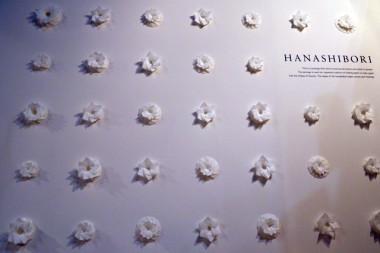 HANASHIBORI