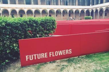 FUTURE FLOWERS ~ ~